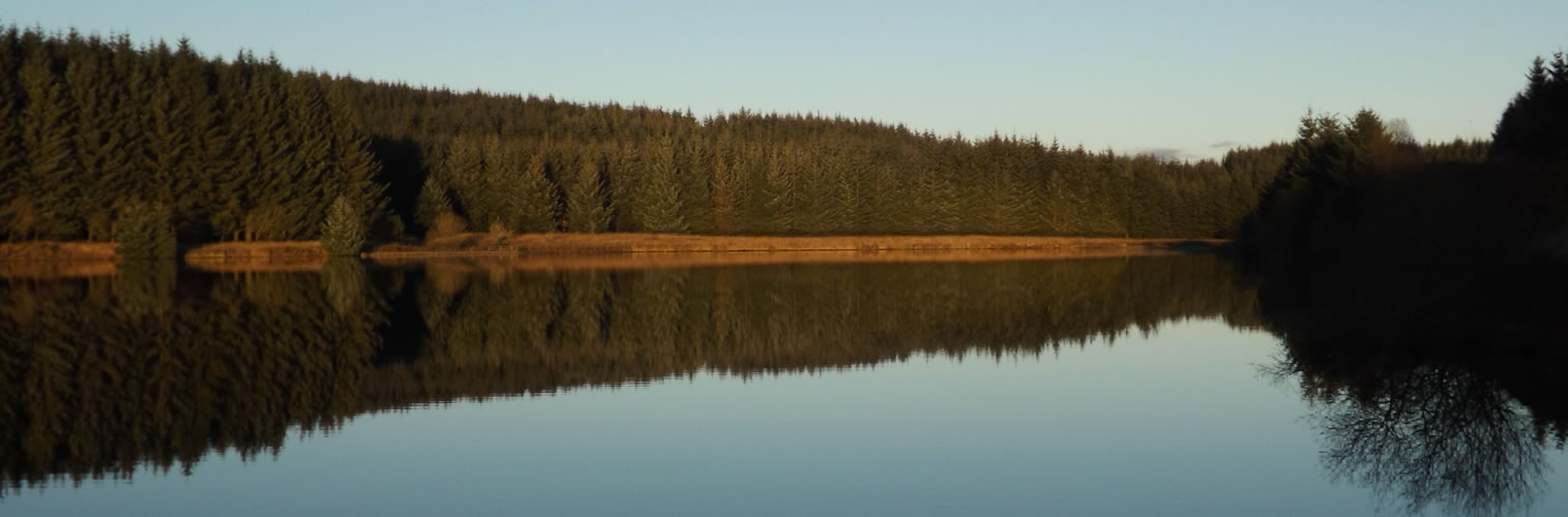Autumn in Dumfries and Galloway - Loch Ettrick
