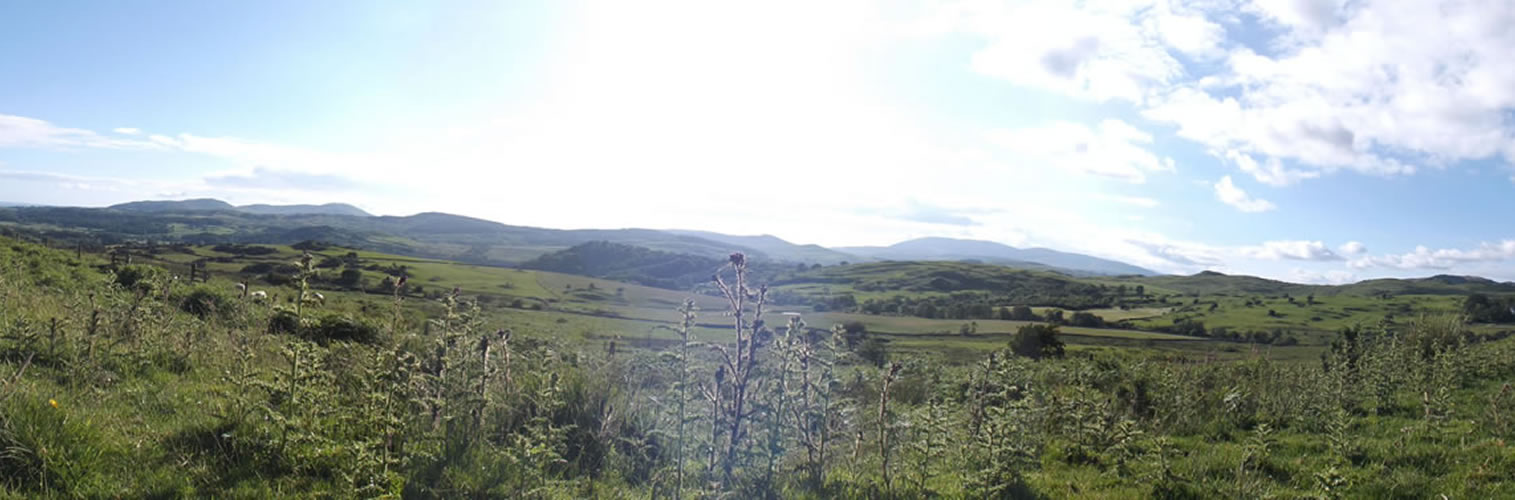 Summer in Dumfries and Galloway - Galloway Forest
